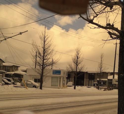 令和 2021年 タレックス  偏光 サングラス メガネ 秋田イチノセキ ラスターブラウン、雪道